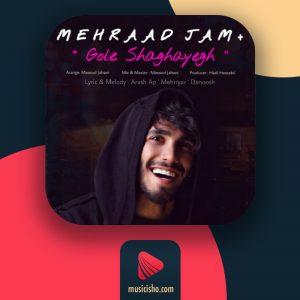 اهنگ گل شقایق مهراد جم | دانلود اهنگ مهراد جم گل شقایق + متن و ویدیو