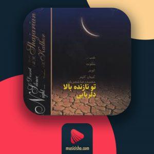 محمدرضا شجریان – تو نازنده بالا دلربایی
