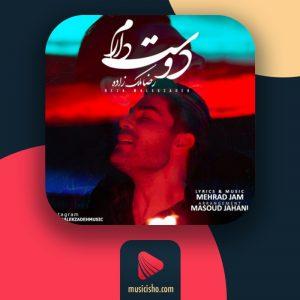 رضا ملک زاده دوست دارم : دانلود اهنگ دوست دارم رضا ملک زاده + متن کامل