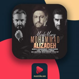 محمد علیزاده – مثل مرگ