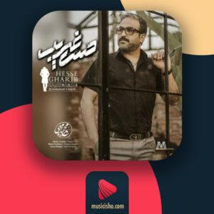 محمد مجیدی حس غریب ❤️ دانلود اهنگ جدید محمد مجیدی حس غریب + متن کامل